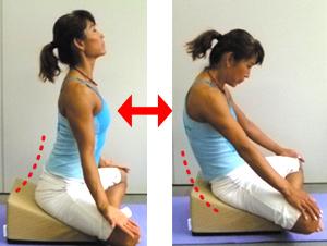 Pelvic Tilt & Shoulder