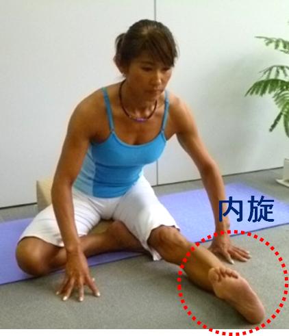 Hamstrings + Internal Rotation