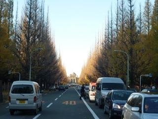 20091207神宮外苑イチョウ並木